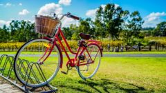 自転車保険への加入義務化。利用者は保険契約の確認を。